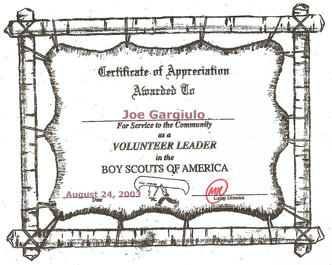 BSA volunteer award winner certificate