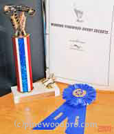 Pinewood derby Trophy and Ribbon picture